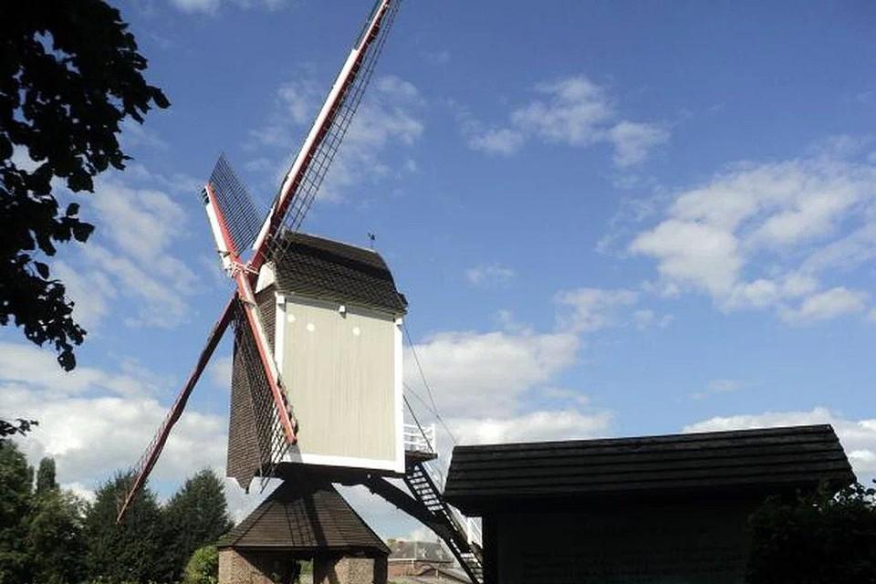 De windhaan in betere tijden en waar die thuishoort: op de achterzijde van het dak van de Molen van Larum.