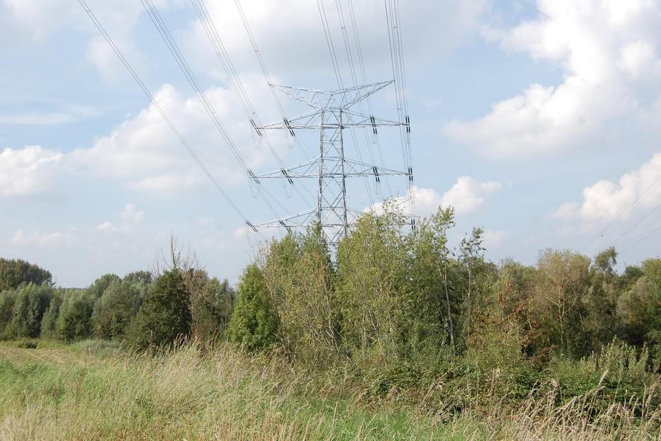 De begroeiing aan de masten moet wijken voor de bouw van een nieuwe mast.