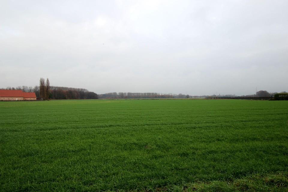 De inwoners denken na over het groen zoals in de Molenbeekvallei.