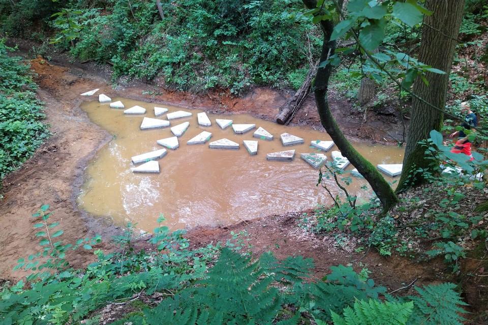 Wandelaars kunnen gebruikmaken van stapstenen om over het water op de Hoge Weg in Kasterlee te stappen.