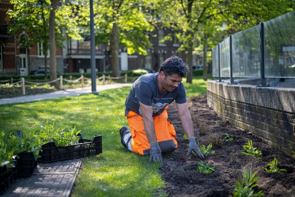 Nieuw groen aanplanten behoort tot het takenpakket.