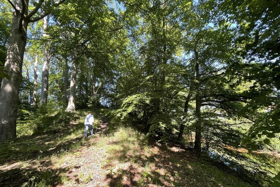 Een wandelaar op de Kattenberg, met rechts onderaan de foto de Kleine Nete.