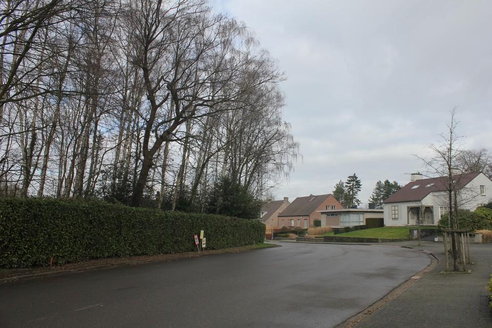 Volgens de plannen komt in het stukje bos links plaats voor vier huizen.