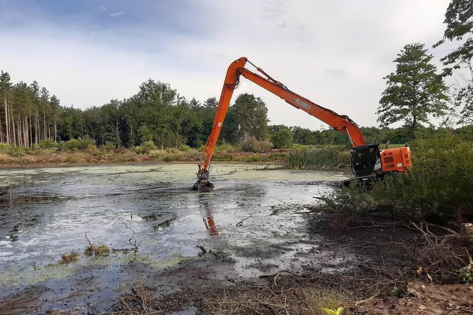 Het baggerwerk van de vijvers is begonnen nadat vissen en amfibieën werden overgezet.