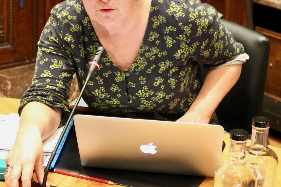 Schepen Kris Swaegers tijdens de Boechoutse gemeenteraad.