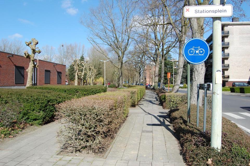 Het fietspad wordt volledig heraangelegd, met extra aandacht voor de bomen.