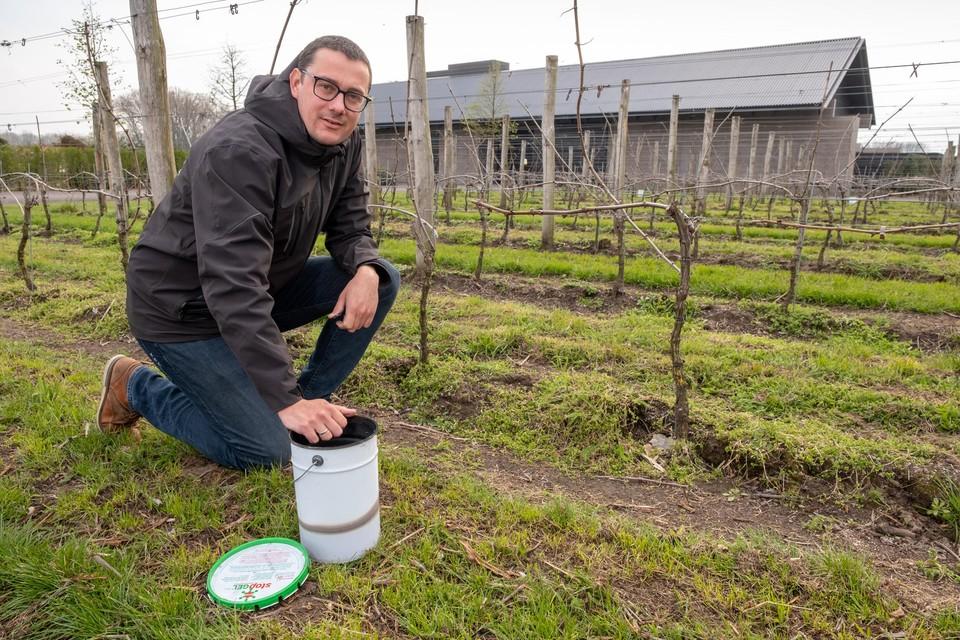 """""""April is elk jaar weer een zeer kwetsbare periode. Niet alleen voor de fruitteelt, maar ook voor de Belgische wijnbouwers"""", zegt Pieter Raeymaekers."""