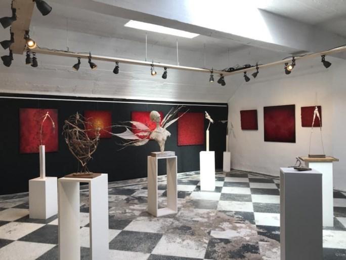 Een expo in de Kloosterstraat.