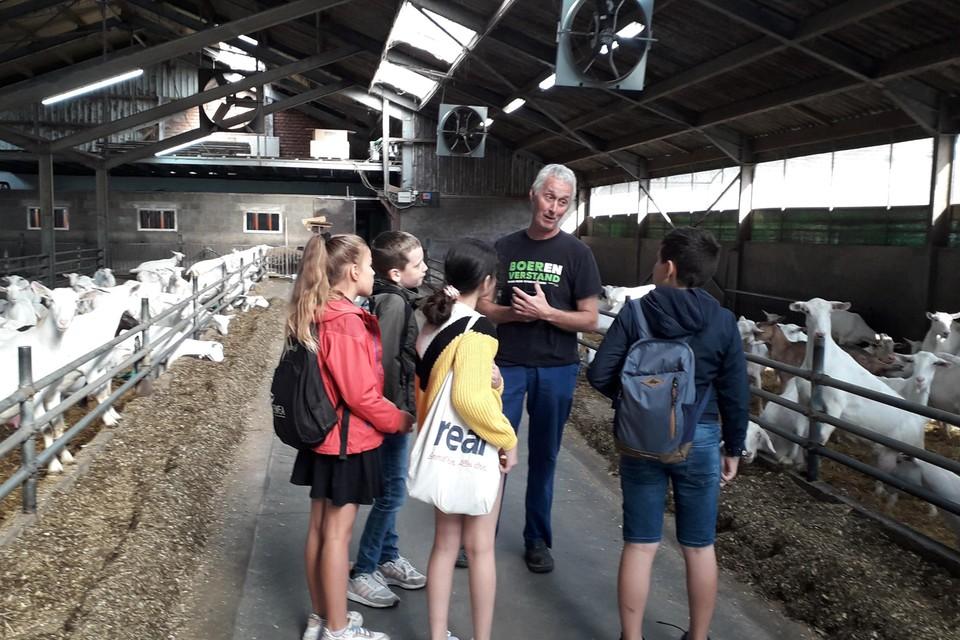Geitenboer Ton Jansen geeft uitleg aan vijfdejaars uit Brecht tijdens de plattenlandsklassen.