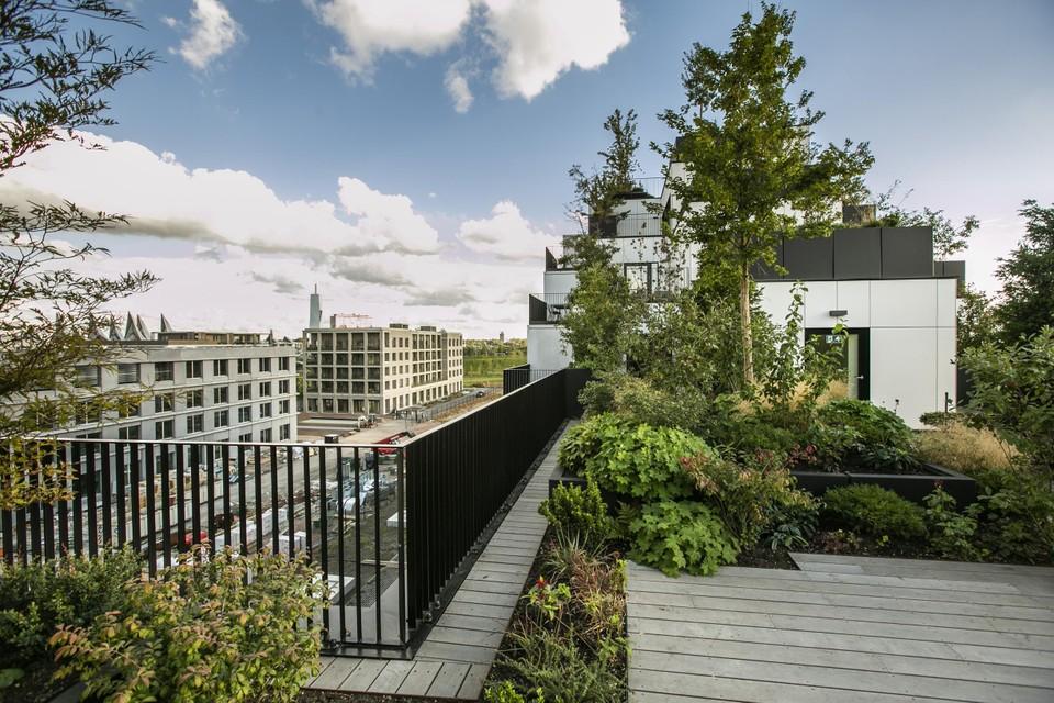 Palazzo Verde heeft 86 bomen en 2.200 struiken en planten op de daken en terrassen.