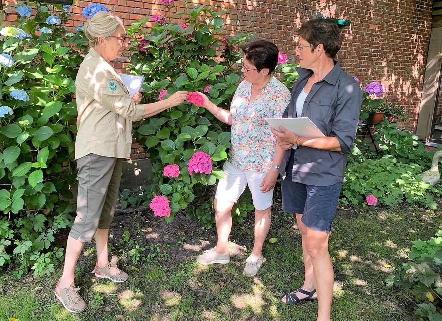 Linda en Lutgarde geven advies aan Myriam Dirven