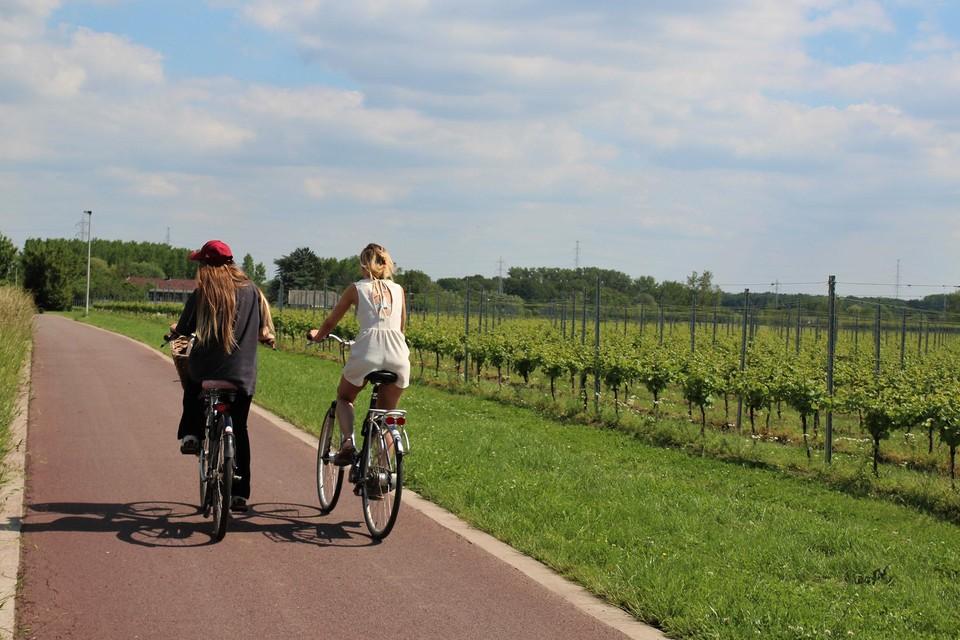 Op de 12 km kom je de verschillende velden van Oud Conynsbergh tegen.