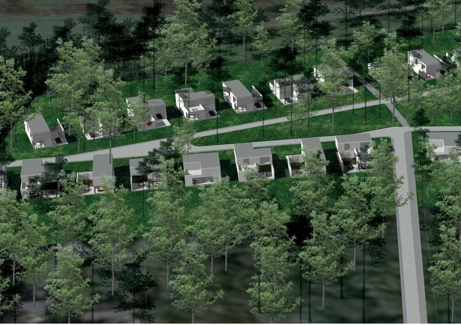 Een overzichtsbeeld van de 'oude' verkaveling met 34 woningen. Volgens de indieners met veel groen tussen de huizen.
