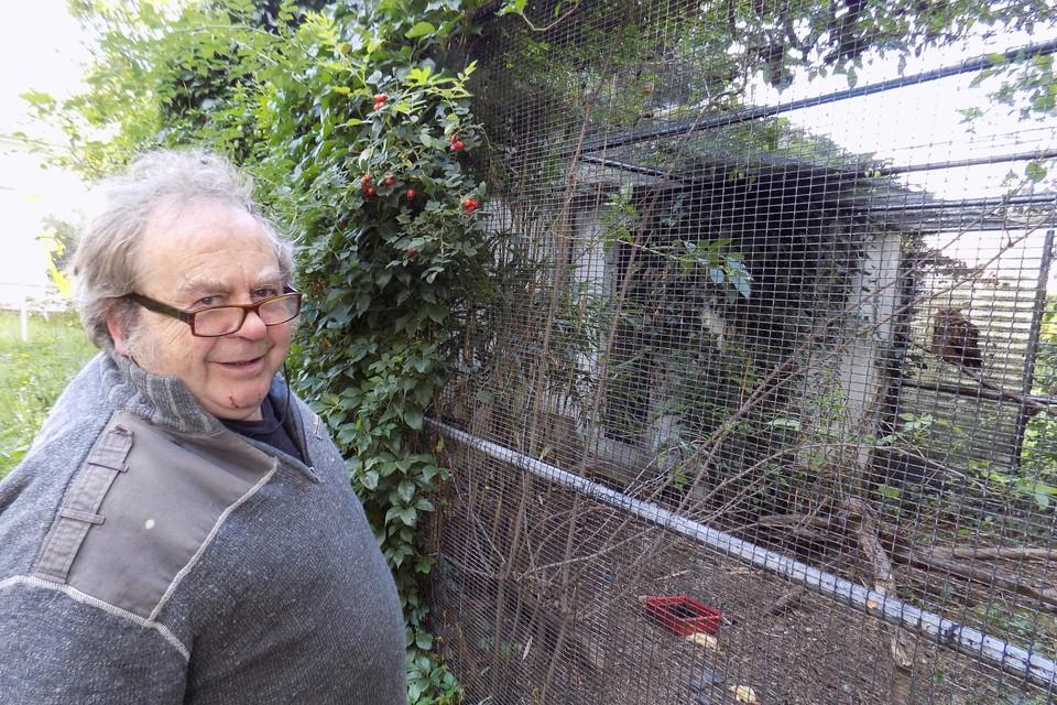 Chris Schoenmakers uit Vosselaar staat bij zijn kooi met daarin een oehoe. Een tweede oehoe is eind augustus ontsnapt en is nog op de dool.