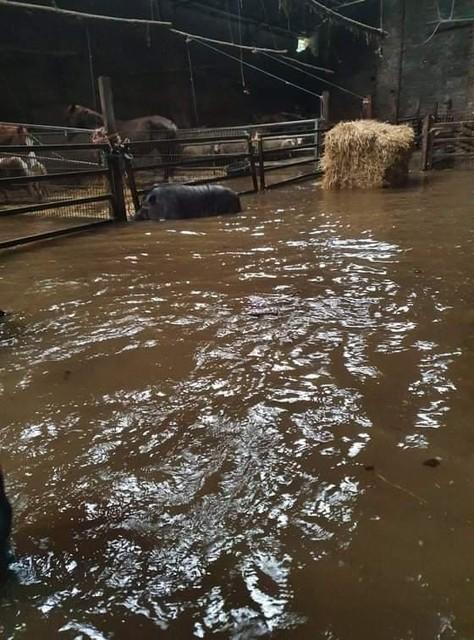 Foto's van SAPAD op het moment van de overstroming.