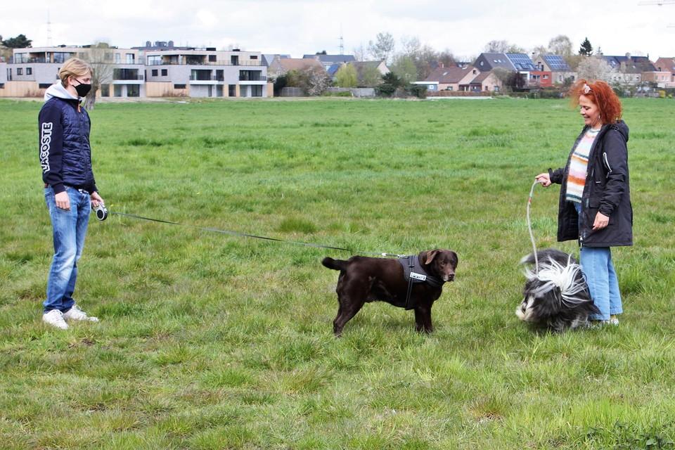 Twee baasjes komen al eens kijken naar de toekomstige hondenspeelweide.