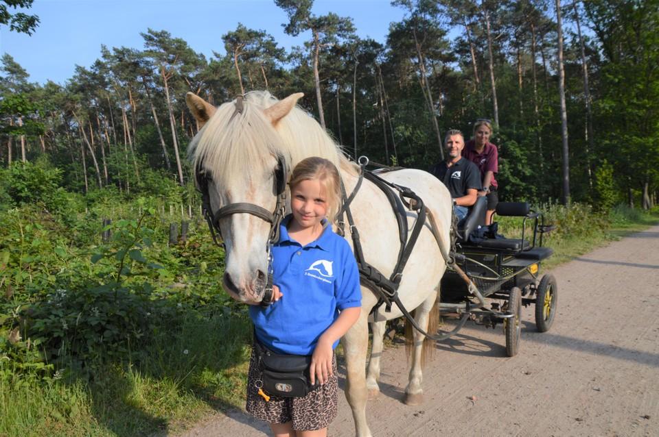 Laura De Bruyn (9) met haflinger Nelson. Johan De Bruyn en Greet Aka zitten op de koets.