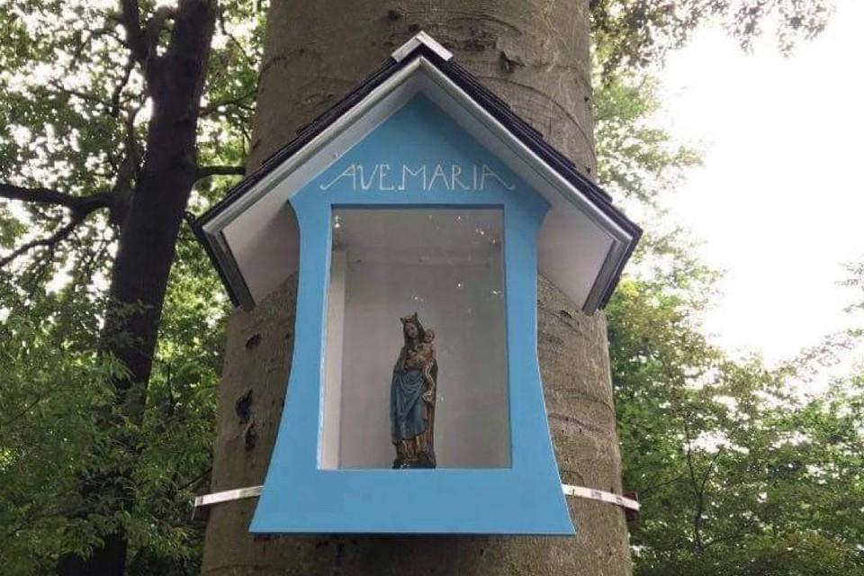 De nieuwe boomkapel aan de Lemberg.