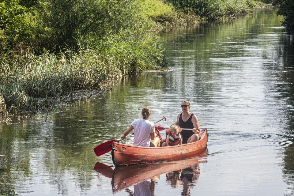Het water op de Kleine Nete staat op de grens van Lichtaart (Kasterlee) en Geel, waar ze vorige week overstroomde, nog altijd bijzonder hoog.
