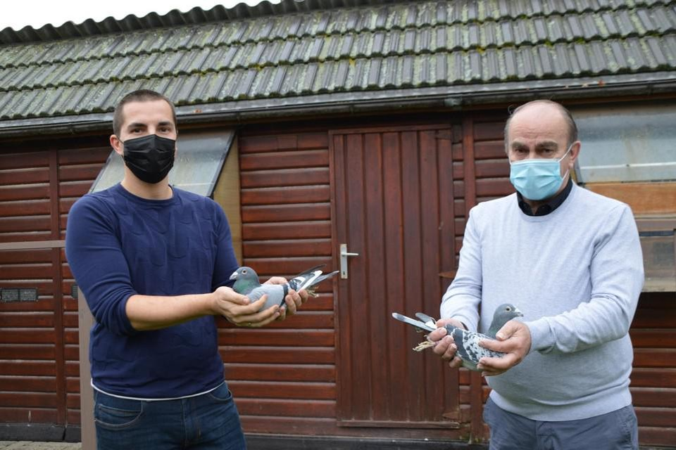Jurgen en Ludo Mertens voor hun duiventil.